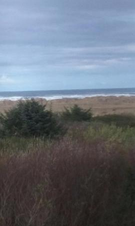 Quinault Sweet Grass Hotel: View from our room!