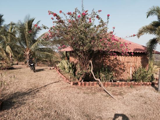 El Viejo, Nikaragua: photo2.jpg