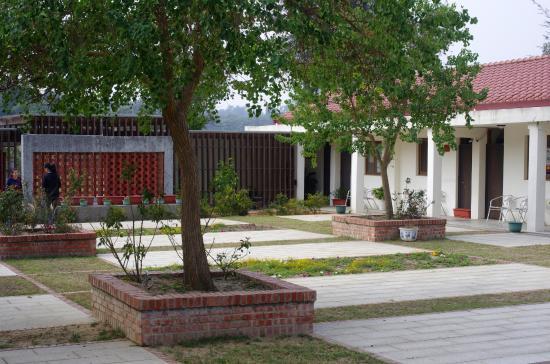 Xiao Jing Tea House
