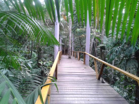 Parque do Mindu