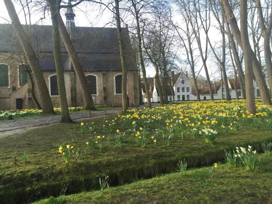 In Bruges Events - Day Tours: photo7.jpg
