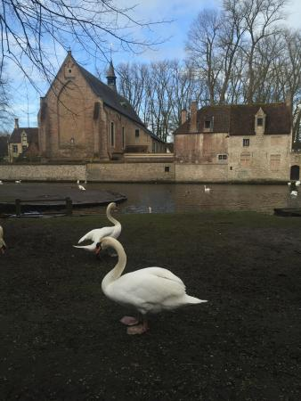 In Bruges Events - Day Tours: photo9.jpg