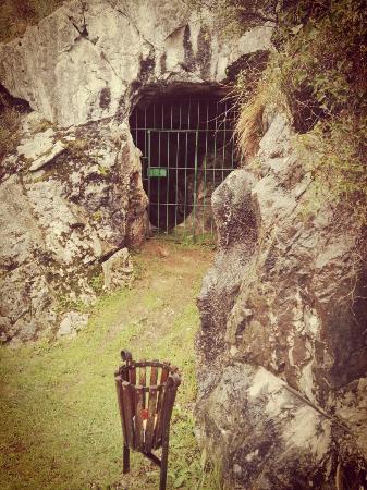 IMG_20160331_123355_large.jpg - Picture of Cave of El Castillo, Puente Viesgo...