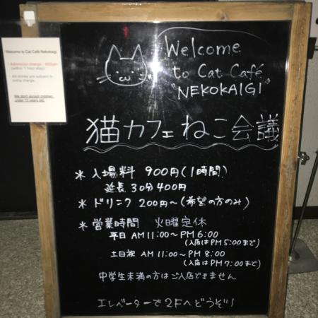 Cat Cafe Neko Kaigi