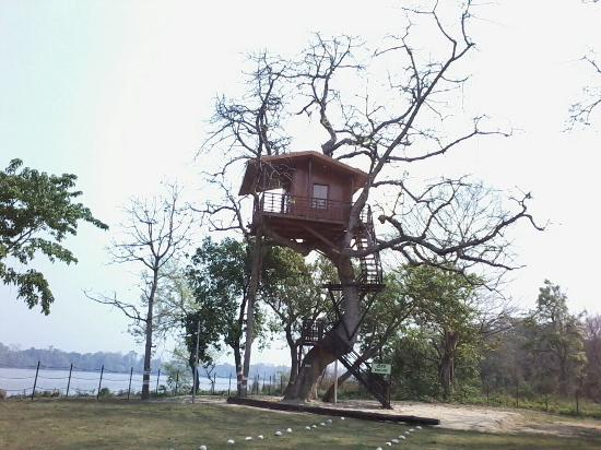 Bahraich, Indien: Tree Hut by the site of River