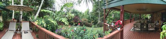 Honu Kai B&B: Blick in den hinteren Garten