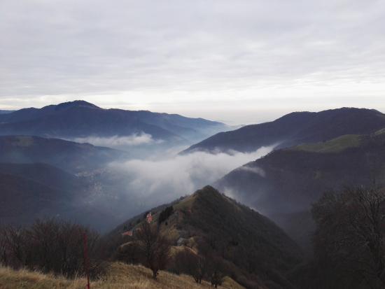 티치노 사진