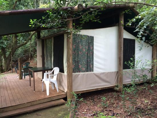 Binna Burra Mountain Lodge Safari Tent 96 was just a tent split in the & Safari Tent 96 was just a tent split in the middle with 2 sets of ...