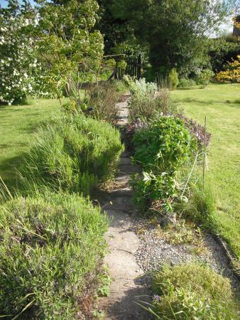Dromineer, Ireland: Lavender Path
