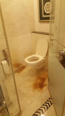 ITC Mughal, Agra: Brown stains around the loo - not evident anywhere else so uric acid??