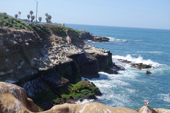 View Of La Jolla Cove From Inside A Cave Man Made During The