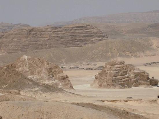 Yalla Safari - Day Tours: desert safari
