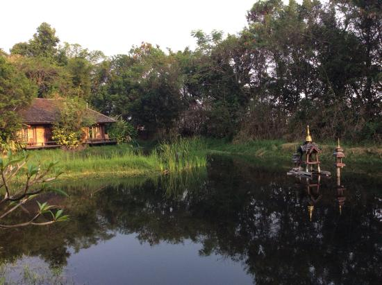 Villa Inle Boutique Resort: The view from our cottage across the pond.