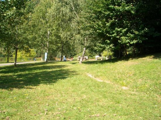 Celles-sur-Plaine, Frankrike: riesiges Gelände
