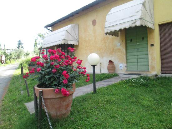 Montespertoli, Italy: apartment Ginestra