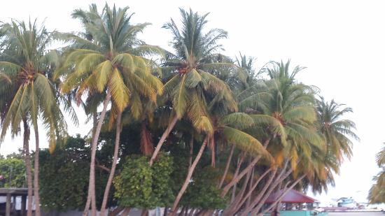 Faafu Atoll Photo