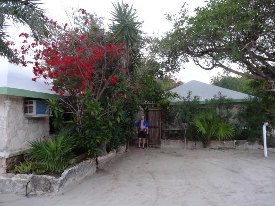 Entrance To Our Zen Garden Bungalow Picture Of Hotel Akumal Caribe