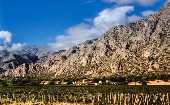 Vinas de Cafayate Wine Resort: Viñas de Cafayate