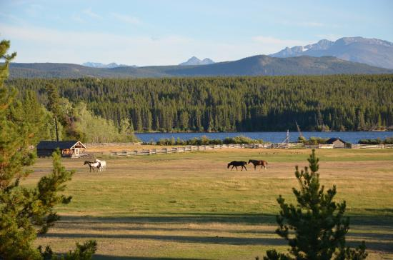 Terra Nostra Guest Ranch Photo