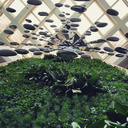 The Westin Convention Center Pittsburgh : Living Wall