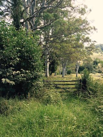 Tirrintippin Farmstay & Horseriding Adventures: photo9.jpg