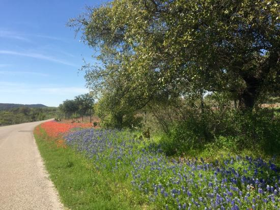 Kingsland, TX: It was a beautiful day in March to explore!