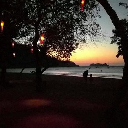 Bosque Del Mar Playa Hermosa Costa Rica Picture Of Hotel Bosque Del Mar Playa Hermosa Tripadvisor