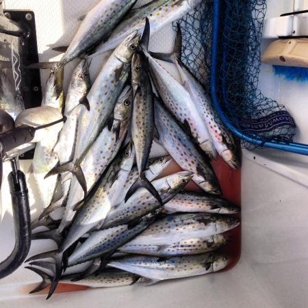 Fish Happens Charters