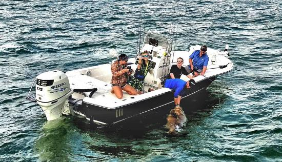 Boca Grande, FL: Getting a goliath grouper dehooked and ready for release