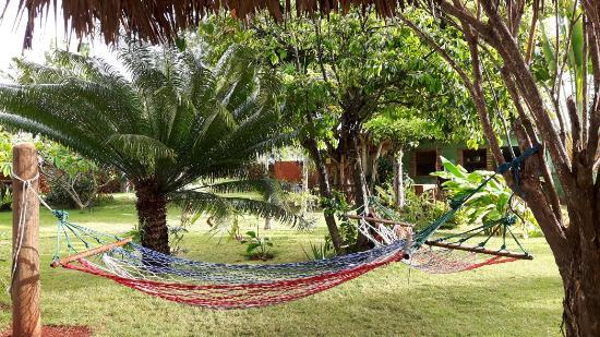 Chalet Tropical Village Photo