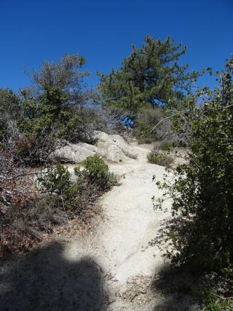 Idyllwild, Kalifornien: Take this path for the better view (looking back to the entrance)
