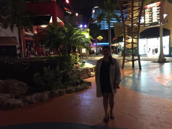em frente ao complexo do hotel cassino picture of seminole hard rh tripadvisor com