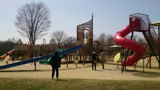 Yukawa Furusato Park: DSC_0847_large.jpg