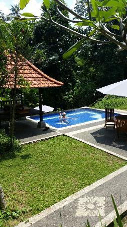 ta img 20160402 052950 large jpg picture of alas petulu cottages rh tripadvisor com au