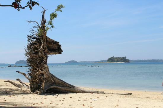 Image result for Wandoor Beach