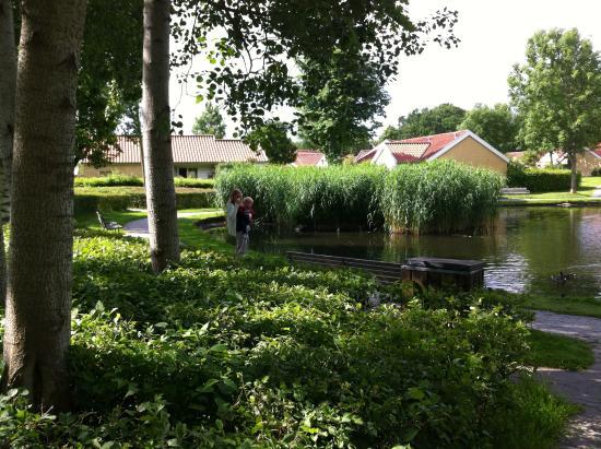 BEST WESTERN Palads Hotel: The idyllic town of Viborg