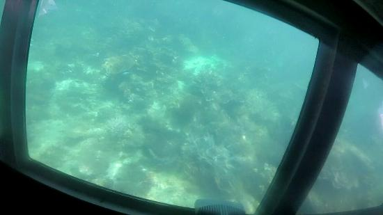Sub Sea Explorer