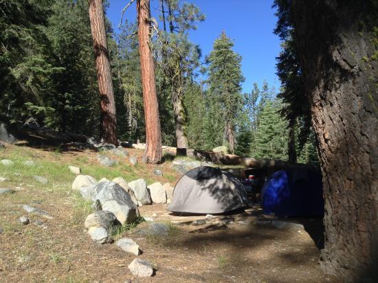 Lodgepole c&ground & Lodgepole campground - Picture of Lodgepole Campground Sequoia ...