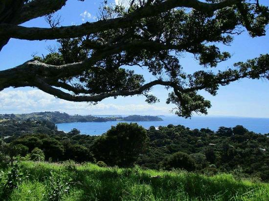 Ilha Waiheke, Nova Zelândia: Eine Trauminsel, jeder Strand anders und einfach wunderschön !