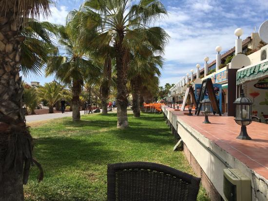 Parque de las Americas: photo1.jpg
