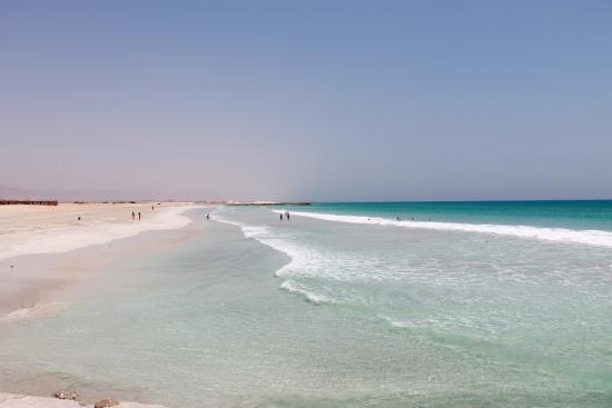 Endloser Strand Auch Delfine Schwimmen Vorbei Bild Von Fanar