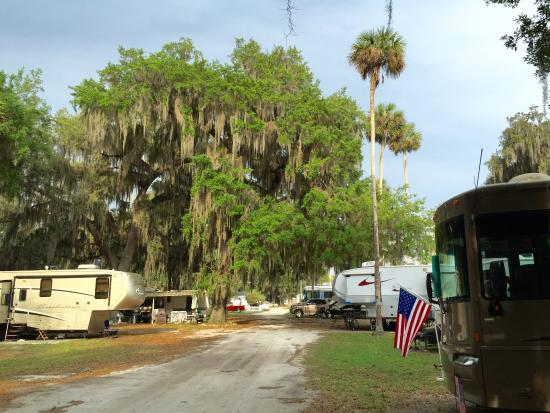 Picture Of Bulow Rv Resort