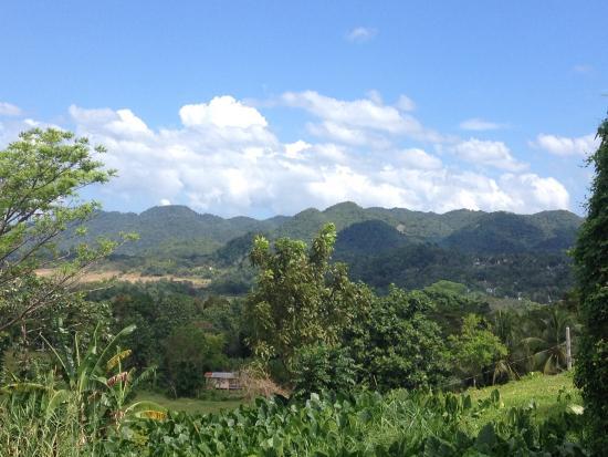 Westmoreland Parish, Jamaica: the beautiful view