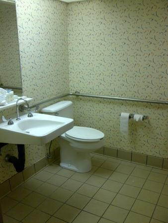 Hampton Inn Brooksville / Dade City: Bathroom
