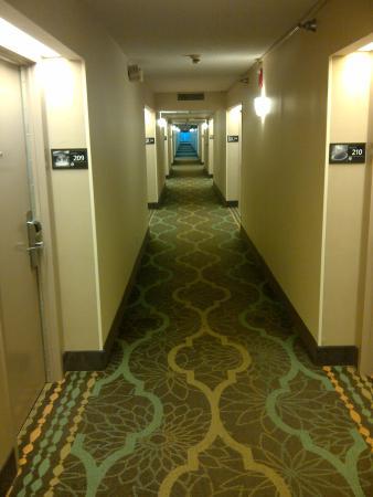 Hampton Inn Brooksville / Dade City: Corridor - first floor
