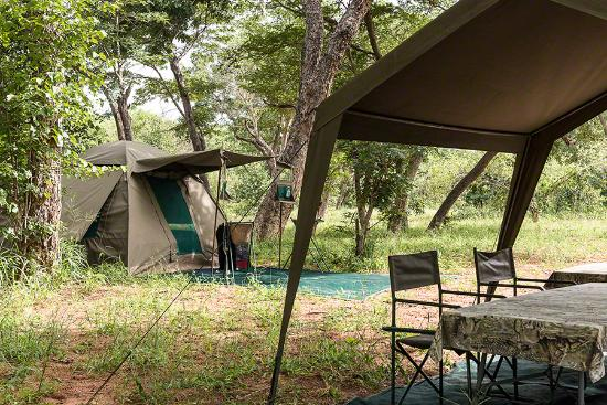 Unlimited Tours U0026 Safaris: Our Tent And Dining Canopy Under Teak Trees In  Chobe