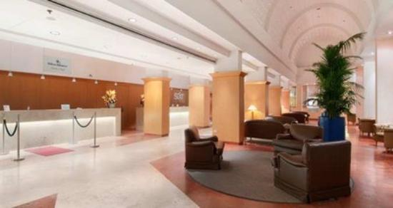 picture of hilton rome airport hotel. Black Bedroom Furniture Sets. Home Design Ideas