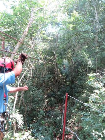 Calico Jack's Belize Jungle Canopy and Zip Lining: Up in the canopy!