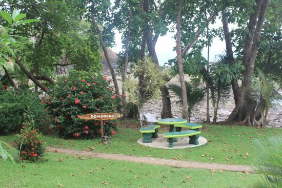 Costa Paraiso: Esta justo en la laya dominicalito