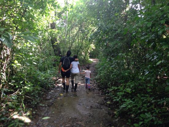Provincia de Guayas, Ecuador: Manglares Churute Ecological Reserve